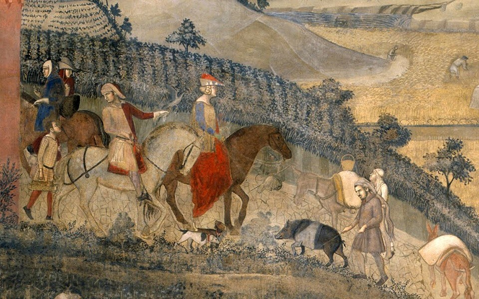 Tartufai Amiata, Il Tartufo del Monte Amiata